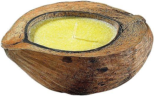 infactory Mückenkerze: Anti-Mücken-Kerze in Kokosnuss-Schale (Insektenschutz Kerze)