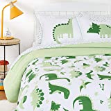 AmazonBasics Kids Easy-Wash Microfiber Bed-in-a-Bag Bedding Set - Full/Queen, Dinosaur Squad