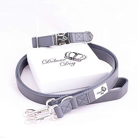 Deluxe Dog Basics - Collar para Perro y Correa para Perros en el ...
