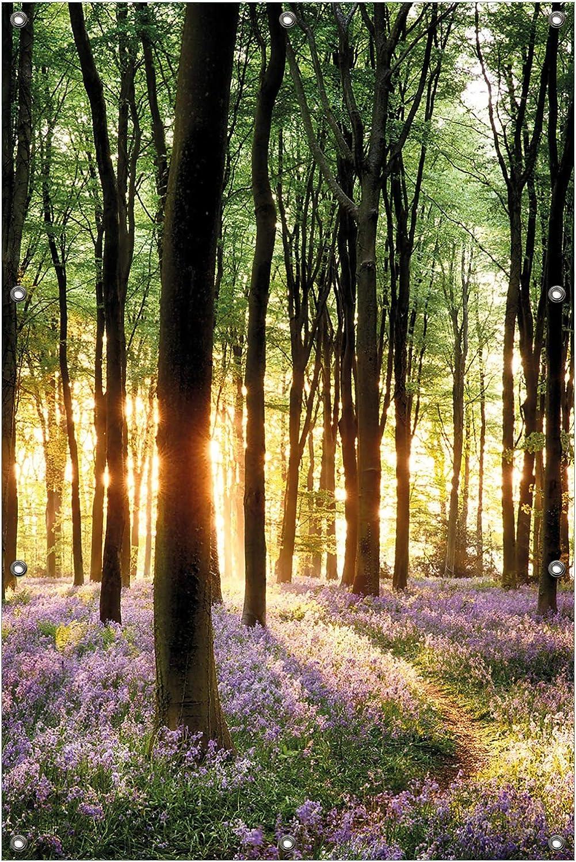 Blaue Hasengl/öckchen im Wald mit Sonnenstrahlen in Premiumqualit/ät Gr/ö/ße: 61 x 91,5 cm Wallario Garten-Poster Outdoor-Poster f/ür den Au/ßeneinsatz geeignet