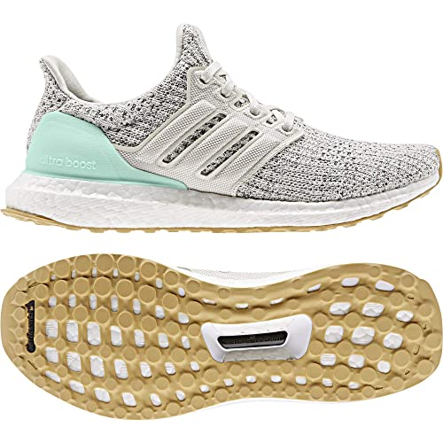 f7a6d3b453303 adidas Women's Ultraboost W Trail Running Shoes