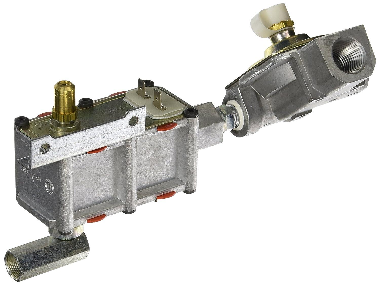 General Electric WB19K10051 Oven Valve and Pressure Regulator