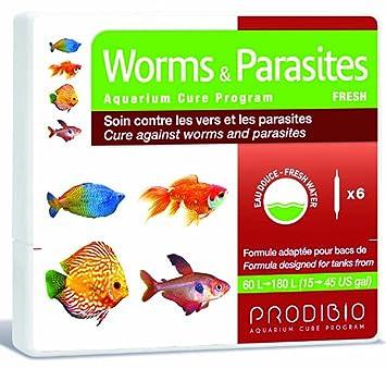prodibio worms parasites freshwater fish treatment 180l amazon