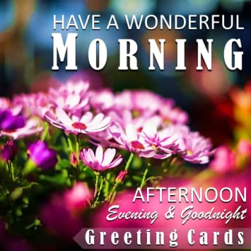 Amazoncom Good Morning Afternoon Evening Night Greeting Cards