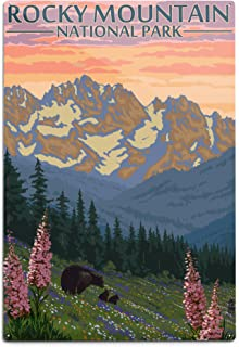 product image for Lantern Press Rocky Mountain National Park, Colorado, Bear and Cubs with Flowers (12x18 Aluminum Wall Sign, Wall Decor Ready to Hang)