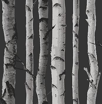 Fine Decor Papier Peint Motif Bois Foret Bouleau Fd31052 Birch