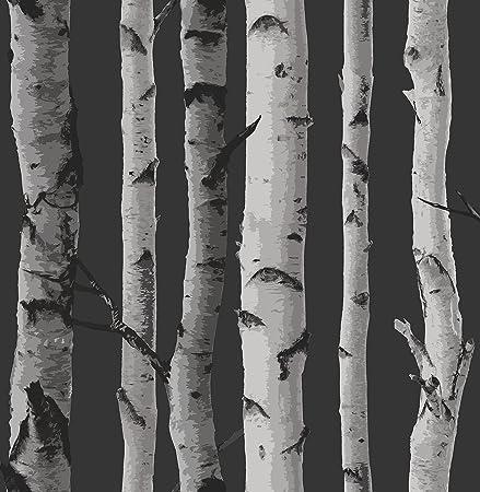 Fabulous Brewster FD31052 Birch Tree Wallpaper - Black: Amazon.co.uk: DIY  PE59