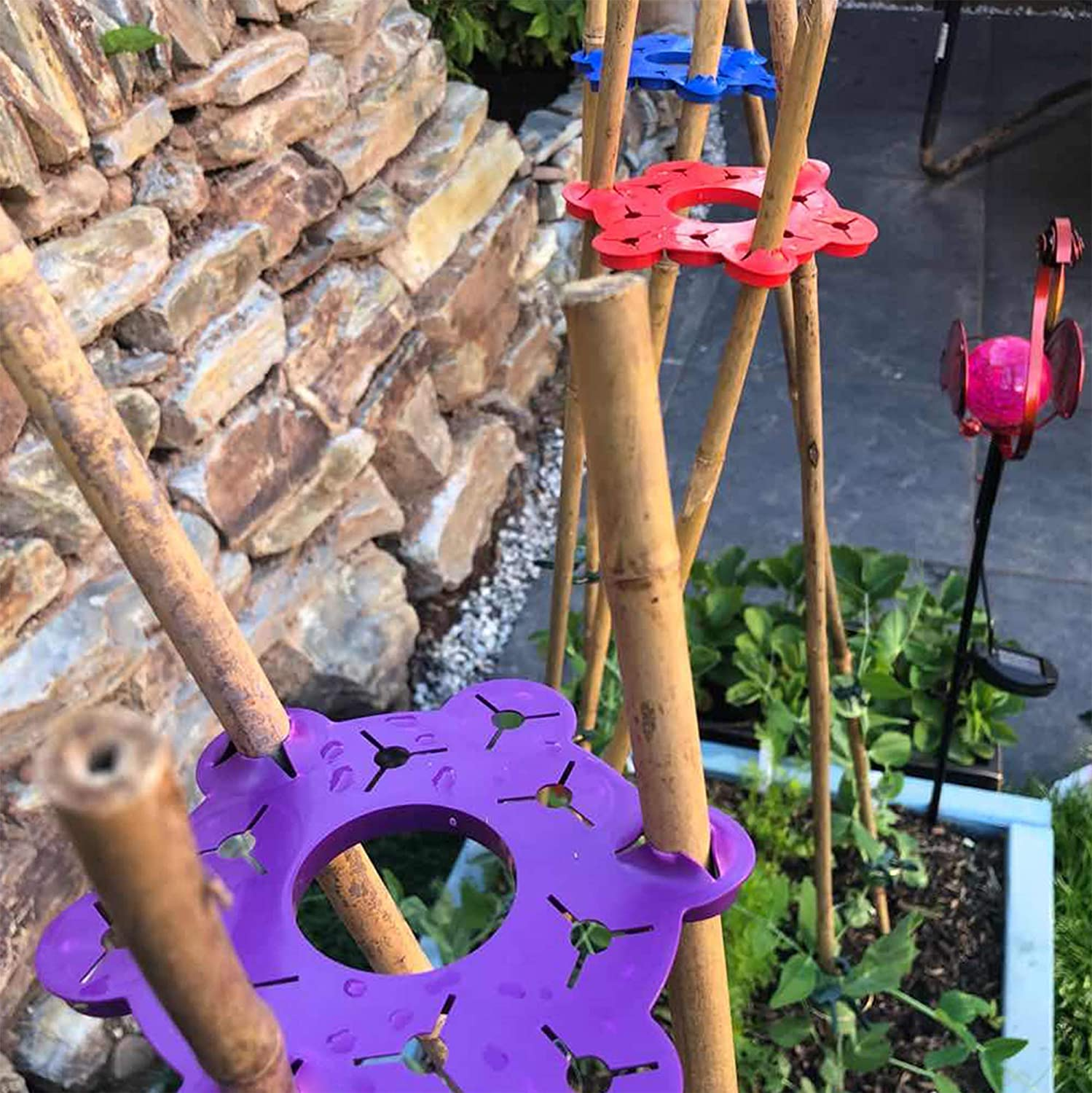 Cucumbers /& So Many More Purple Set Of 6 Beautiful Colours Beans Sweet Peas For Climbing Plants Tomatoes Wigwam Support Proudly Made In The UK Bamboo Wigwam Cane Support