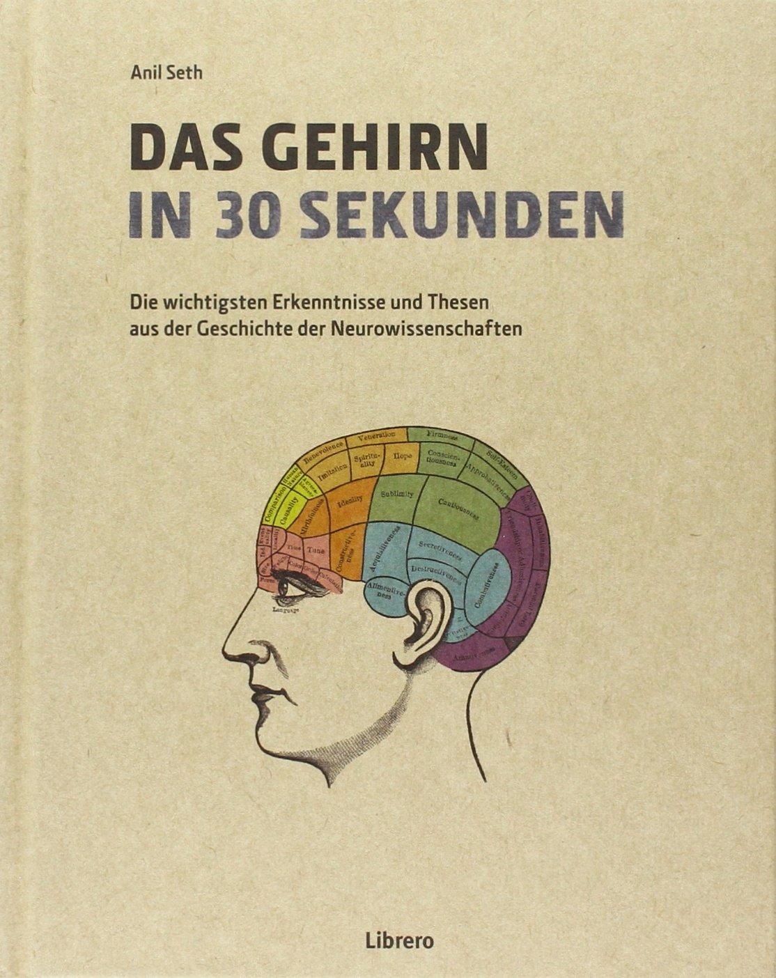 Das Gehirn in 30 Sekunden: Die erstaunlichsten Theorien der Neurowissenschaften in 30 Sekunden