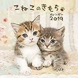こねこのきもちカレンダー2019 ([カレンダー])