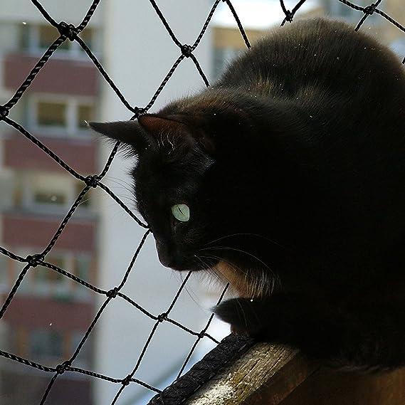 Filete gato | Red para gato | seguridad & protección de nailon resistente | sin taladrar, incluye cuerda de fijación | ventana, balcón, terraza | 2,5 x 6 m: ...
