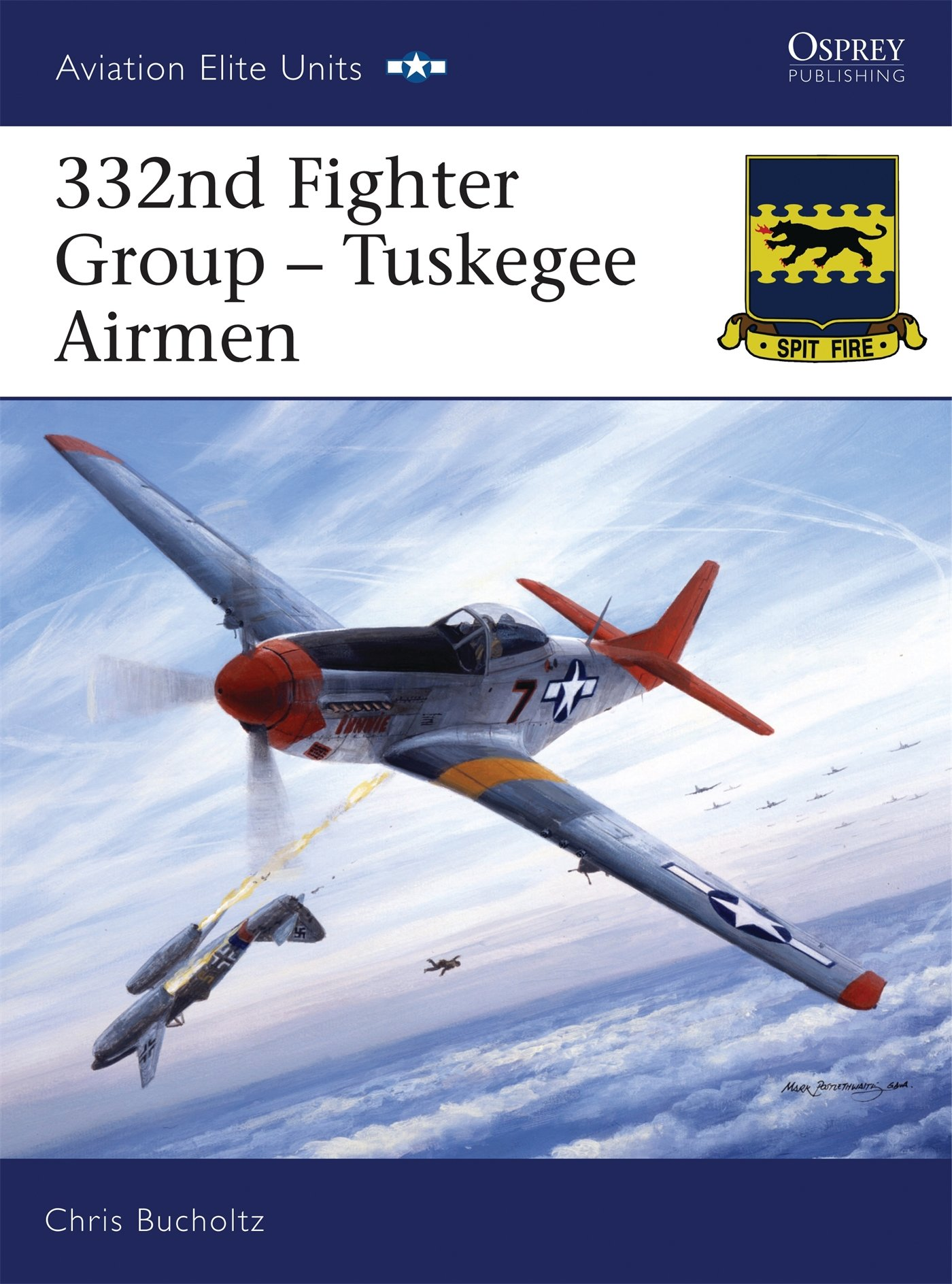 332nd Fighter Group: Tuskegee Airmen (Aviation Elite Units