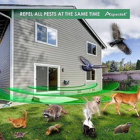 Yard Sentinel, al aire libre electrónico ultrasónico Pest Animal repelente, Animal Control, Control de plagas repelente de repelente de, gato, perro, ...