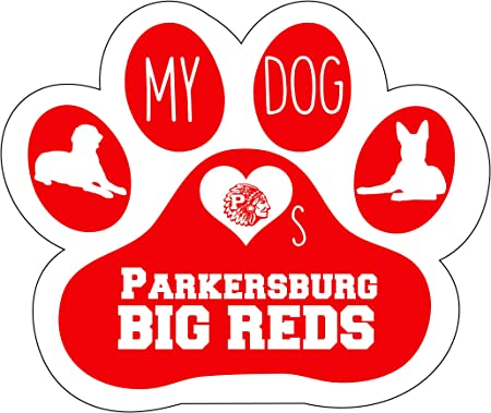 R and R Imports Inc Parkersburg High School Big Reds Indian West Virginia Sports Team Oval Car Fridge Magnet