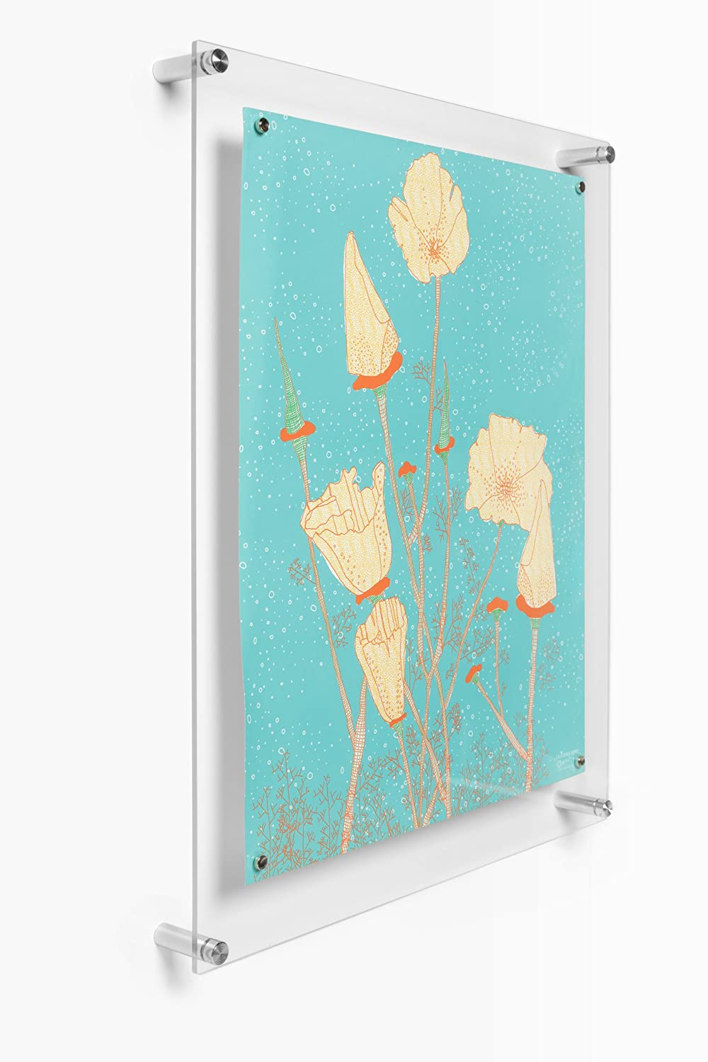 Amazon.com: Wexel Art 19x23-Inch Popster Magnetic Single Panel ...