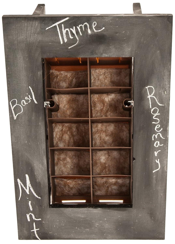 Amazon.com: BrightGreen BGWM8W Living Wall Planter Kit With Frame, Dark  Walnut: Garden U0026 Outdoor
