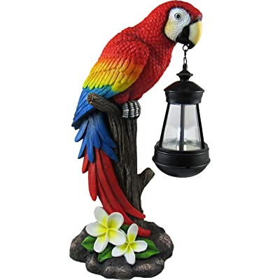 "DWK 13.9"" Tropical Glow Beautiful Parrot Colorful Island Macaw Solar Powered LED Lantern Figurine Patio and Garden Decor : Garden & Outdoor"