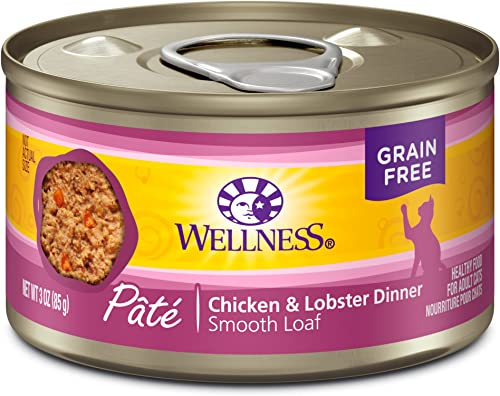 Wellness Complete Health Natural Grain Free Wet Canned Cat Food Pate Recipe Chicken Lobster Pate