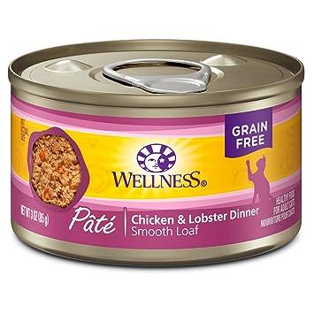 Amazon.com: Comida para gatos enlatada Wellness, comida ...
