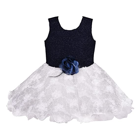 15cdd97d8 Wish Karo Baby Girls Net Party Wear Frock Dress - (bxa157 - White ...