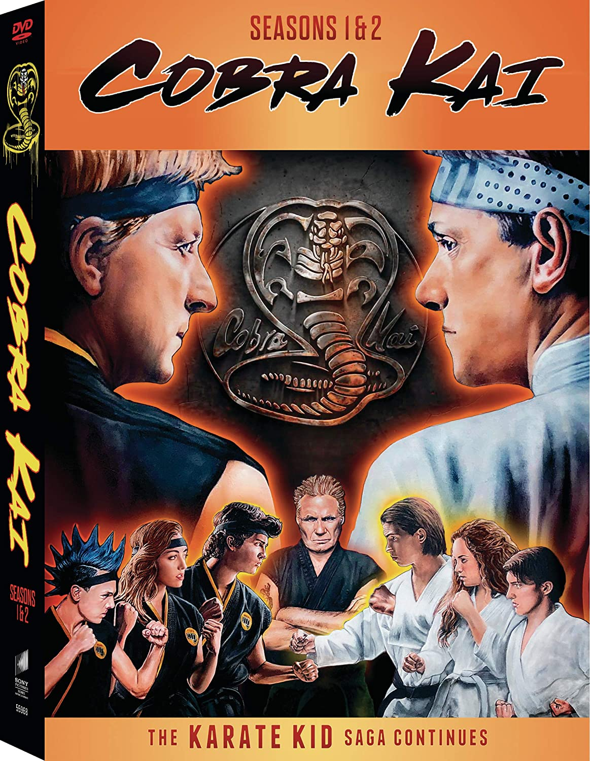 Cobra Kai, la serie sequel di Karate Kid