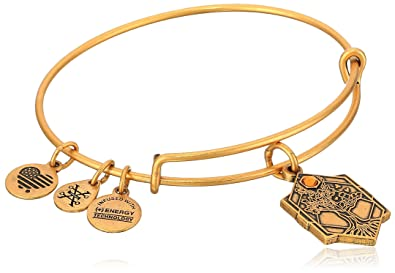 Alex and Ani Tree of Life III Expandable Rafaelian Bangle Bracelet wH46QumYZk