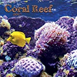 Turner Photo 2017 Coral Reef Photo Mini Wall Calendar, 7 x 14 inches Opened (17998950033)