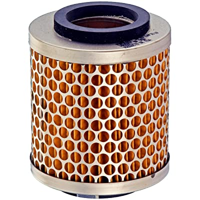 Luber-finer LAF3119 Heavy Duty Air Filter: Automotive