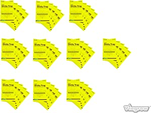 Insect trap, Yellow dual sided sticky insect trap for white flies, fungus Gnats, aphids, leafminers , pest control (10 pack, 50 traps)
