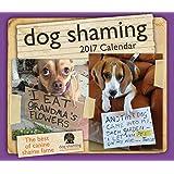 Dog Shaming 2017 Calendar