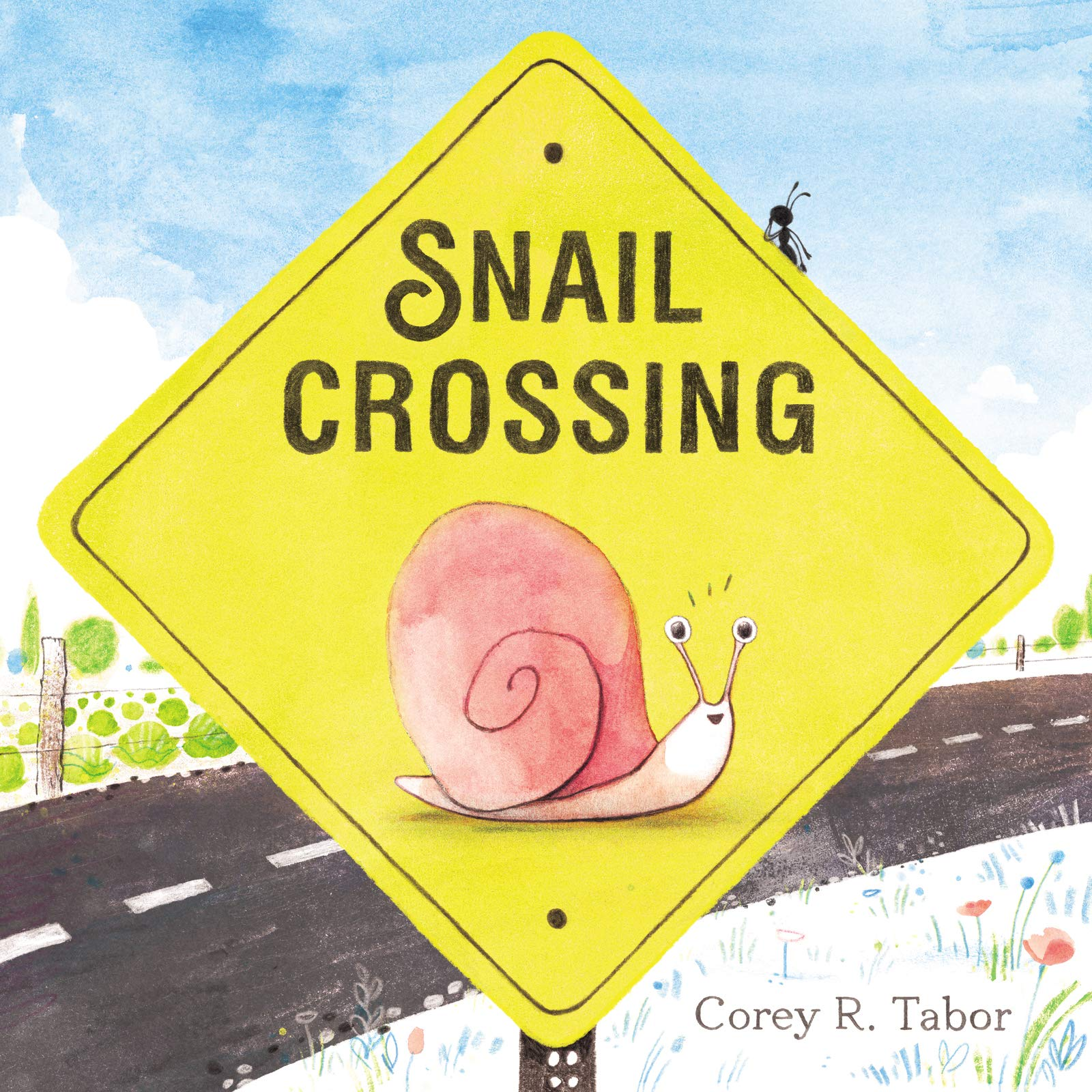 Image result for snail crossing tabor
