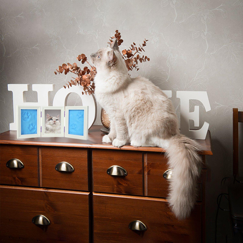Katzen oder Hund Pfote Drucken Andenken Dreifacher Faltender ...