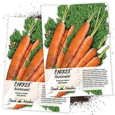 Seed Needs, Tendersweet Carrot (Daucus carota) Twin Pack of 800 Seeds Non-GMO : Vegetable Plants : Garden & Outdoor