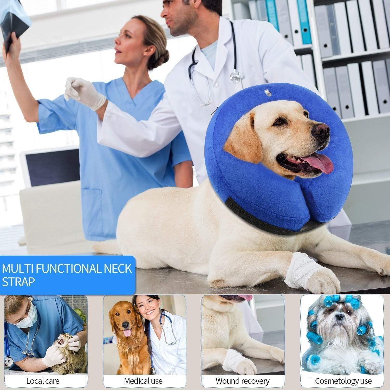 Collares isabelinos para perros