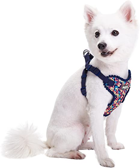 Blueberry Pet Floral No Pull Harness