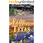 Flor do Texas (Horses Valley Livro 2)