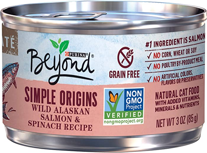 The Best Beyond Canned Cat Food Salmon