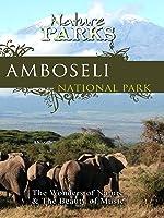 Nature Parks AMBOSELI Kenya