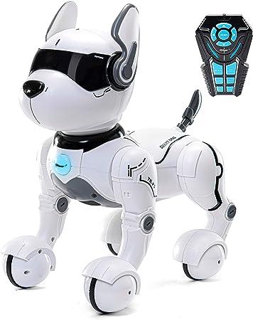 Giocattolo per Cane Robot telecomandato, Robot per Bambini, Giocattoli per Cane Robot Rc Giocattolo per Bambini 2,3,4,5,6 Anni, Giocattolo Robot