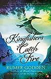 Kingfishers Catch Fire: A Virago Modern Classic (Virago Modern Classics)