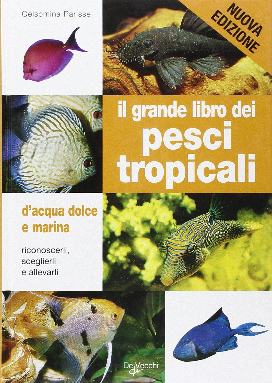Il grande libro dei pesci tropicali. D'acqua dolce e marina Copertina flessibile – 23 apr 2009 Gelsomina Parisse De Vecchi 8841276495 Pesci e acquari