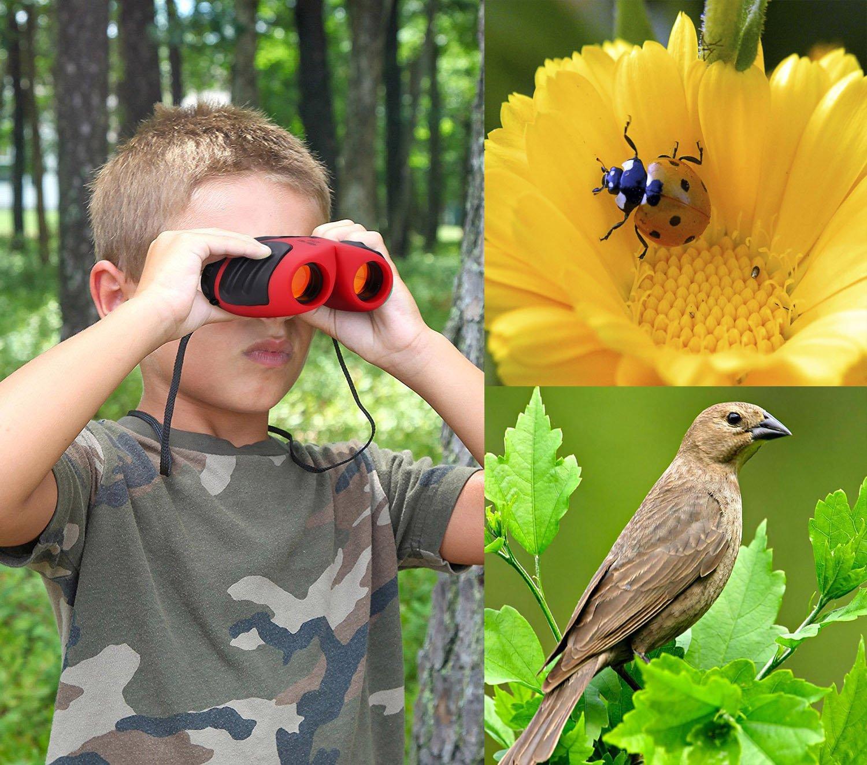 Verde Regalo De Ni/ña Adolescente JRD/&BS WINL Binoculars Juguete 4-11 A/ños De Edad
