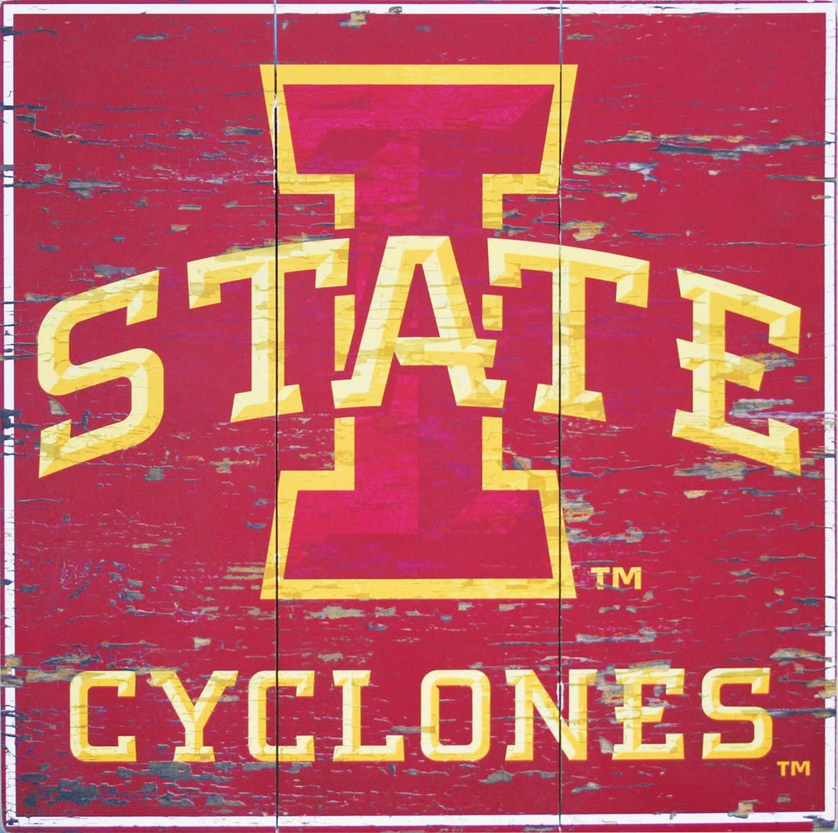 Fan Creations Iowa State in This House Sign Multicolored