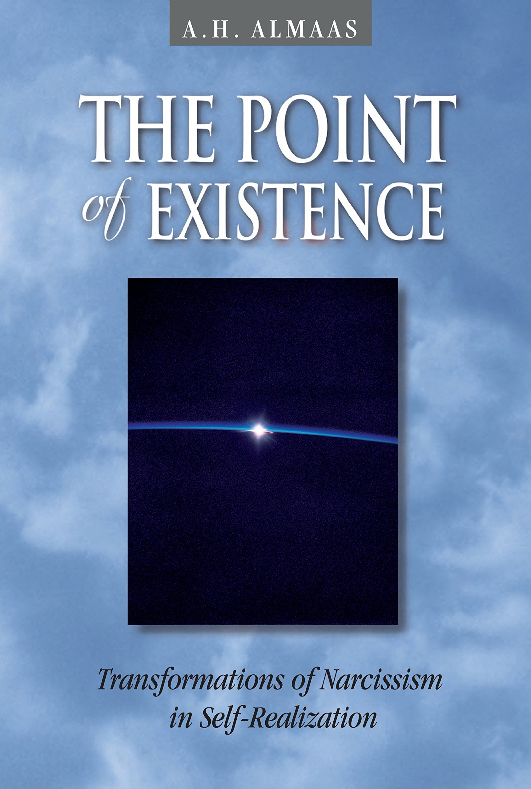Download The Point of Existence: Transformations of Narcissism in Self-Realization (Diamond Mind Series, 3) PDF