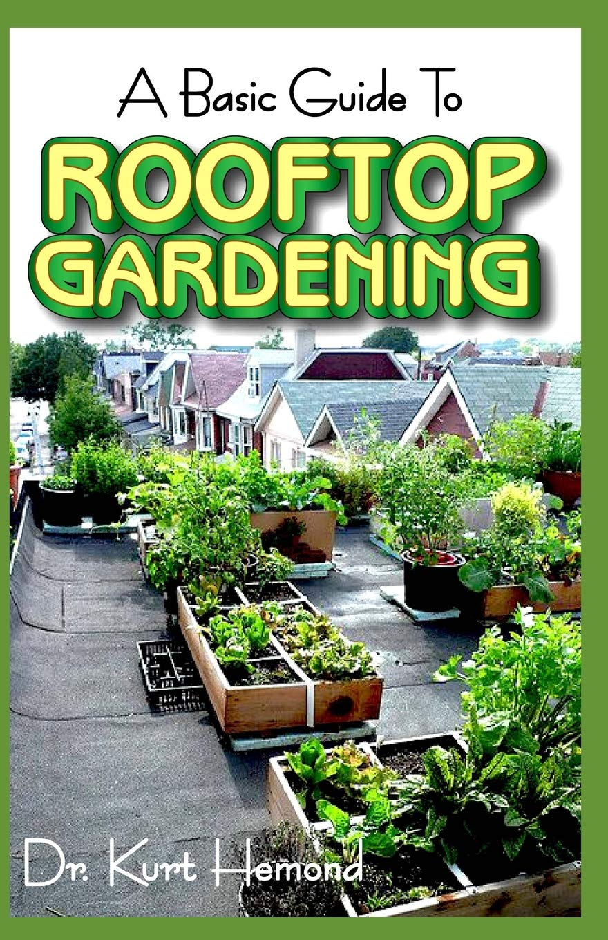 The Basic Guide To Rooftop Gardening All You Need To Know About