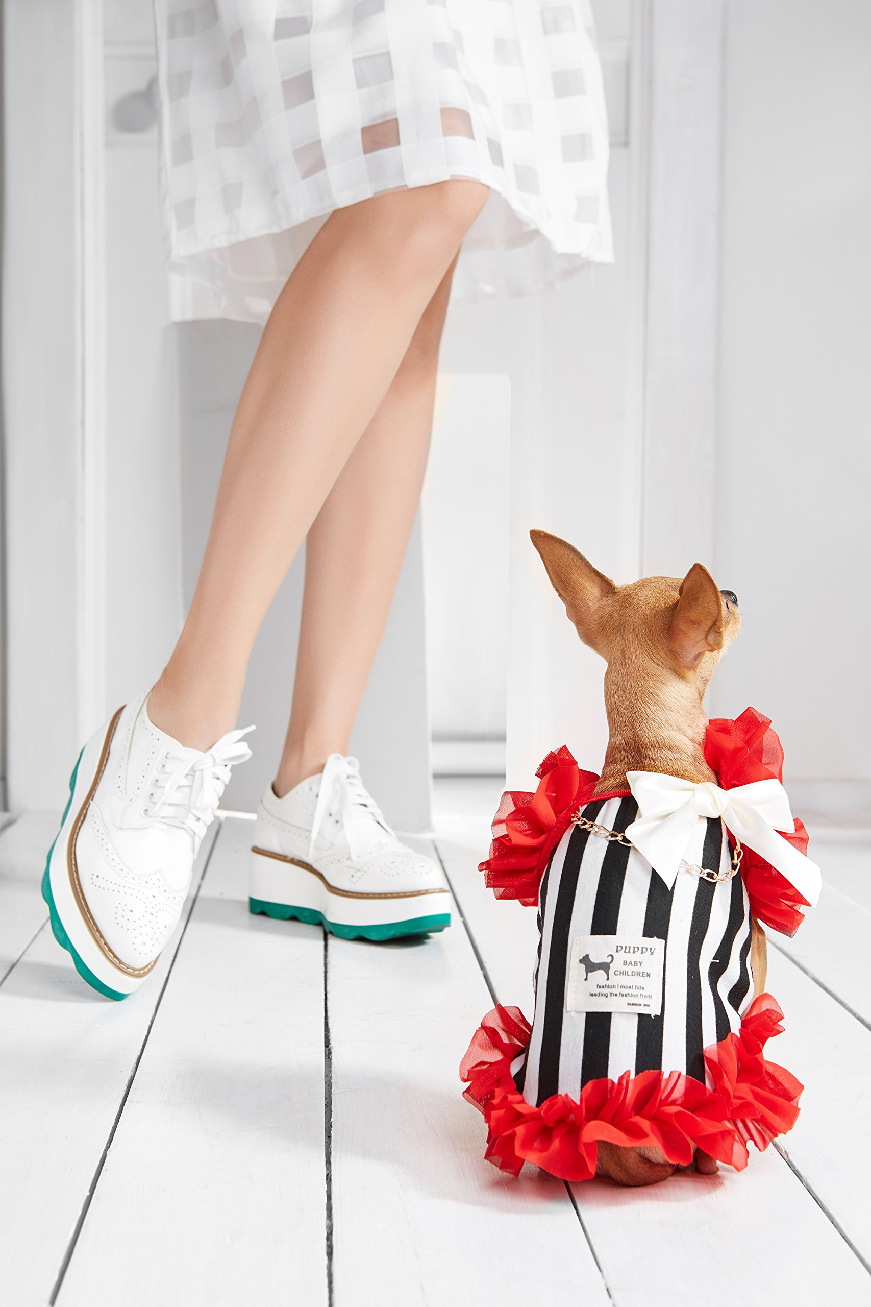 """Small Dog Striped Dress With Ruffles Satin Bow Chain Dogs Cotton Summer Clothes (Toy Plus: 10"""" / 5-9 lbs, Red, Black, White) by Nothing But Love Pets (Image #7)"""