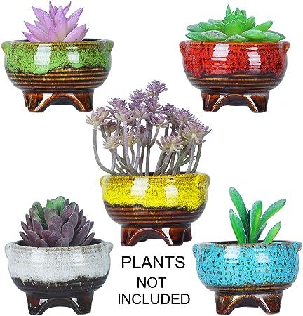 mix flowers miniature clay handmade ceramic pot set of 6 lovely item