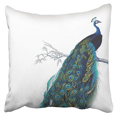 Amazon.com: accrocn fundas de almohada azul cobalto turquesa ...