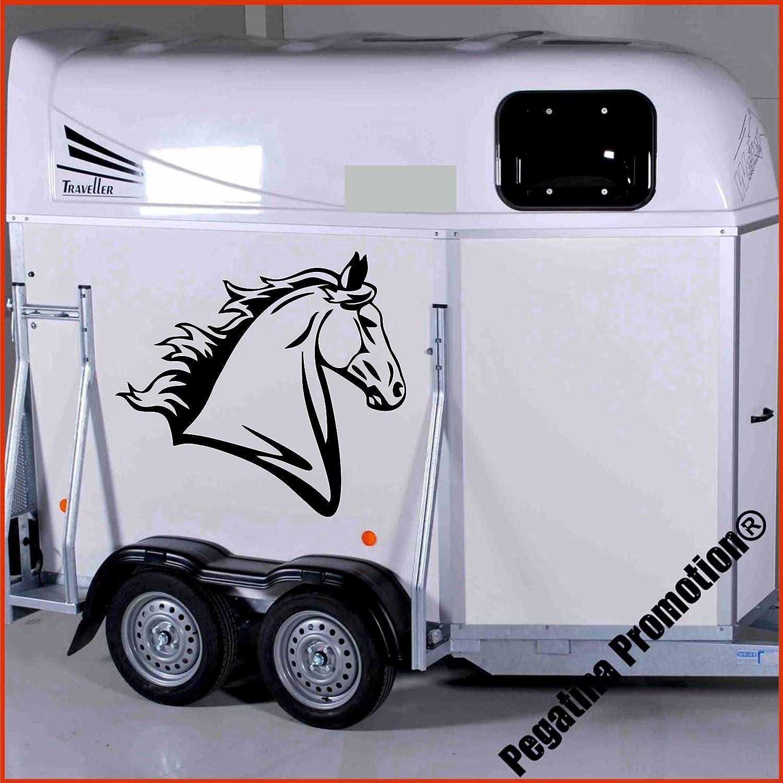 Pferdekopf Modell 3 Aufkleber Anhänger Pferd Anhänger ca. 60cm Pegatina Promotion ®
