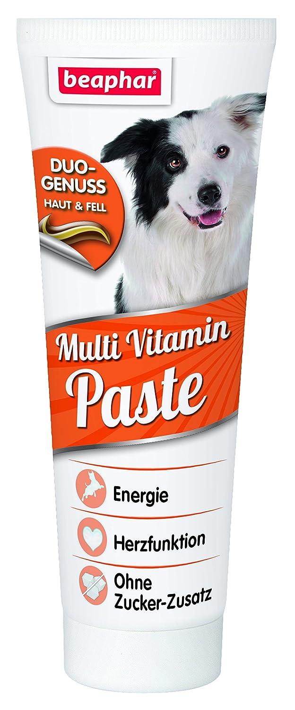 beaphar Multi Vitamin Paste für Hunde | Fördert Herz-Funktion ...